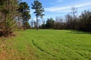 260 Acres Higgenbotham Rd.
