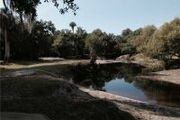 50 Acres On Charlie Creek, Hardee County, Florida