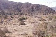 53.89 Acres On Pala Rd., 1