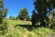 9 Acres Upper Meadow Rd.