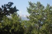 0 Alps Rd.