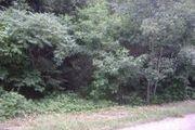 Arrowhead Trail, 6