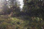 2029 Cephus Trail Northwest