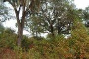 Corner Of Ashville Highlands & Auc Plantation