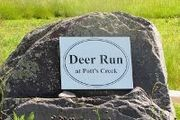 Deer Run At Potts Creek