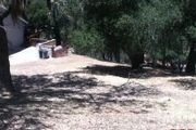 8769 Deer Trail Ct.