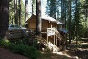 7709 Forest Dr.