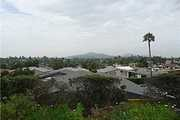 1719 Kiwi Glen