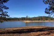13441 Lake Francis Rd.