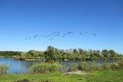 1131 Lake Swamp Rd.