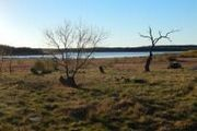 Lakefront Cir.