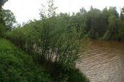 000 N. Pine River Rd.