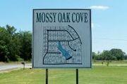 15 Oak Cove