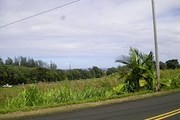 29-2095 Old Mamalahoa Hwy. Rent to Own