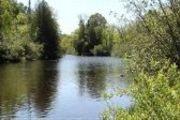 Tbd Brule River