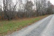 Tbd3 Crooked Creek Trail