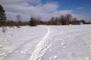 1158 W. County Line Rd.