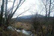 0 Xxoo Innis Creek
